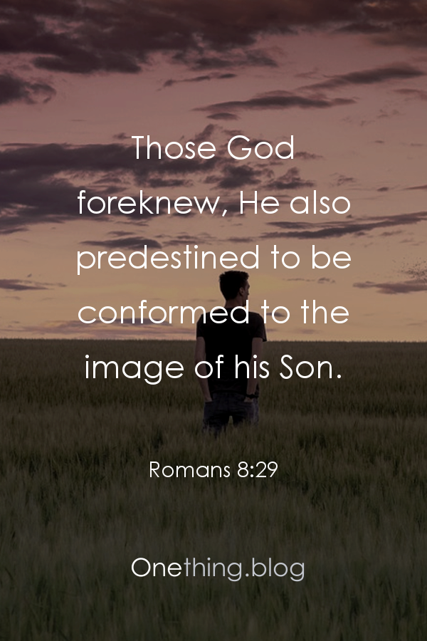 Pin conformed to the image of his son